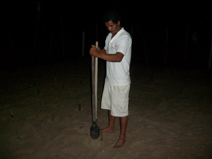 Campamento Tortuguero Los Quelonios. Playa Ventura, Copala. Guerrero, México - Haciendo el nido para depositar los huevos de tortuga en el vivero del campamento.